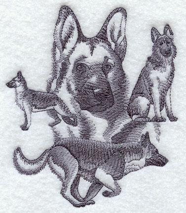 Hunde 01