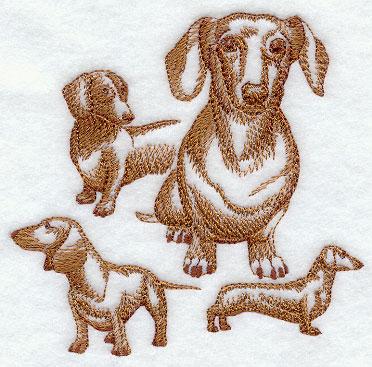 Hunde 02