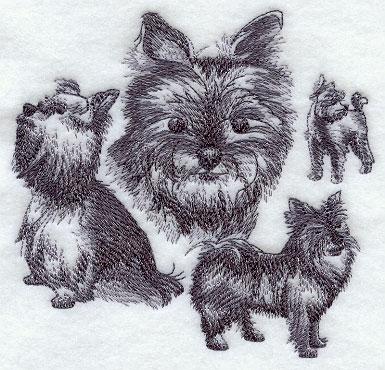 Hunde 03