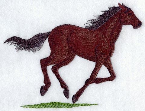 Pferd 01