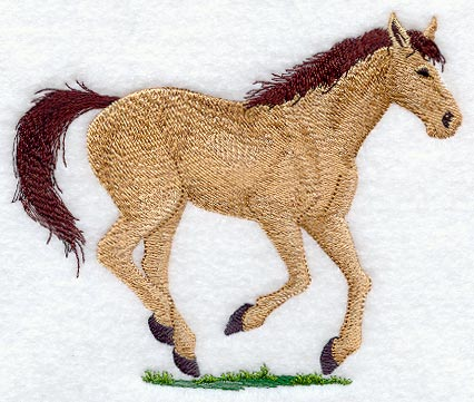 Pferd 05