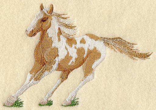 Pferd 06