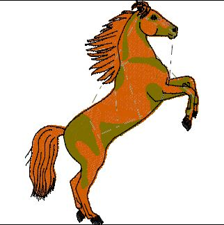 Pferd 19