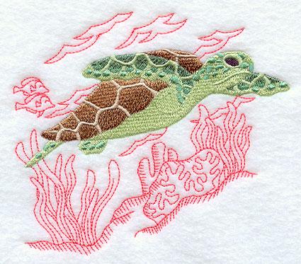 Schildkröte 05